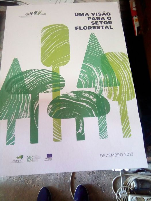 Uma Visão para o Sector Florestal