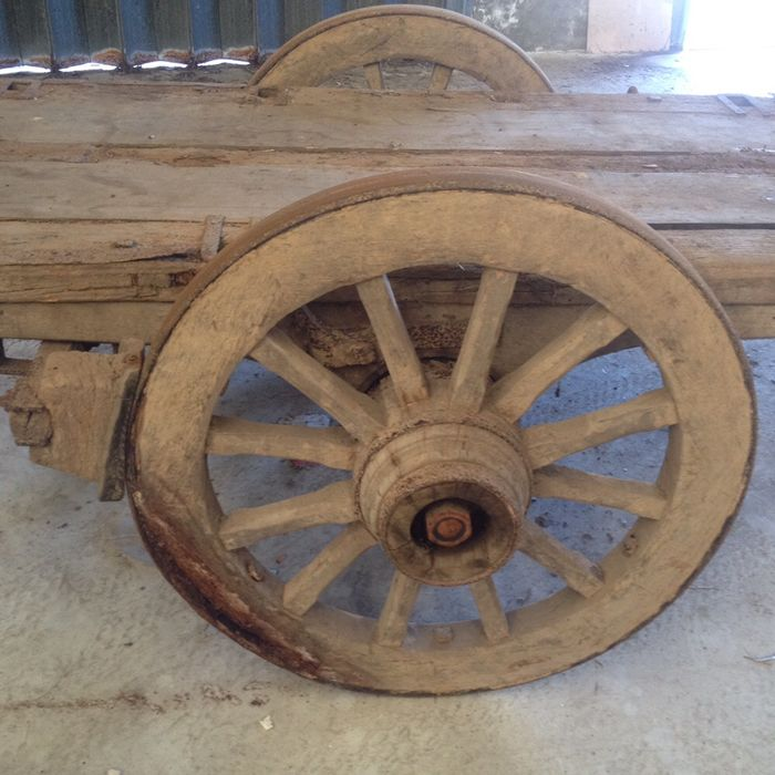 Carroça de Bois Antiga