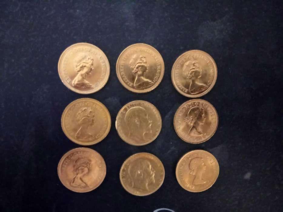 a0853d9ed7d Libras Ouro em Porto - OLX Portugal