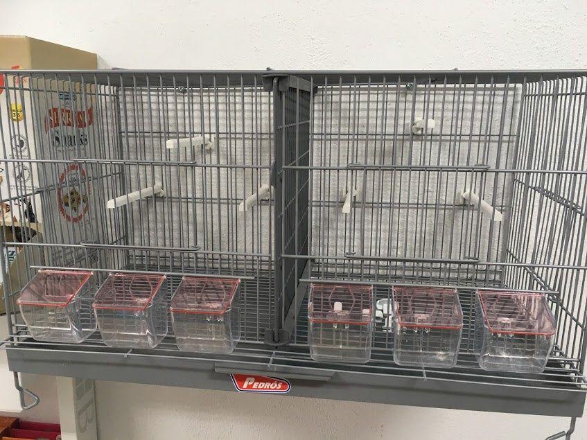 Gaiola para pássaros, criação pássaros, viveiros, Pedros 60cm