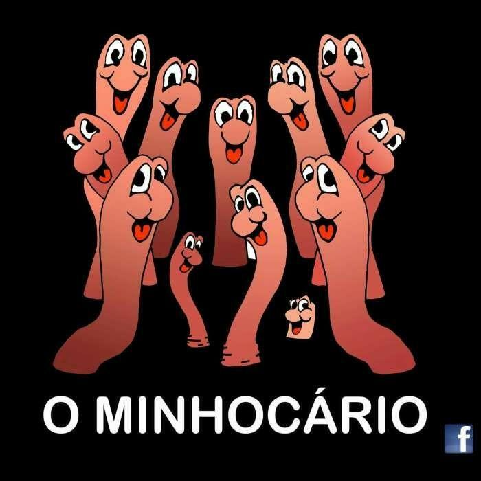"""Minhocas/Húmus/Sistemas de Vermicompostagem""""O Minhocário"""" Pinhal Novo - imagem 1"""