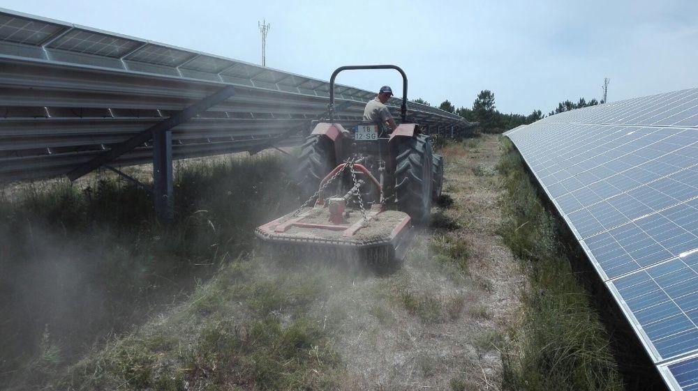 Limpeza de terrenos desmataçao e remoção de resíduos verdes