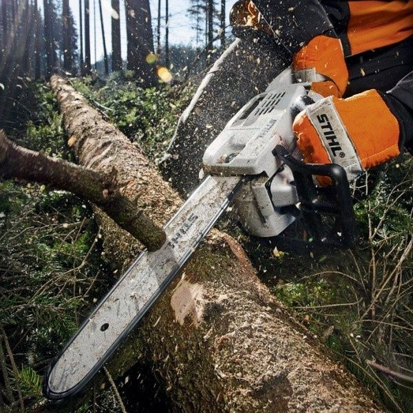 Порізка дерев та гілок, спилювання, чистка, видалення дерев. - Інші послуги  Калуш на Olx