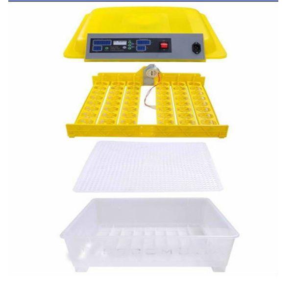 Incubadora 48 ovos galinha automatica