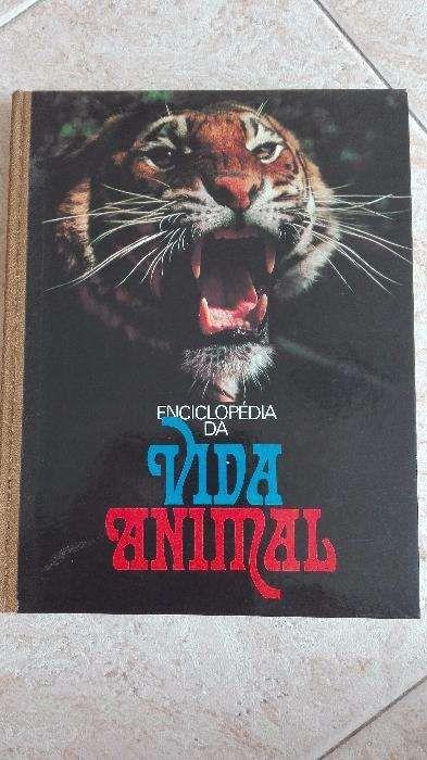 Livro do Mundo Animal