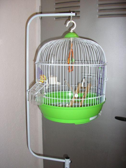 Gaiola - Cage