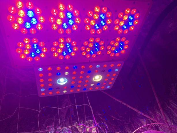 lampy do doświetlania roślin 500w led