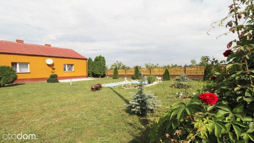 Dom z zabudowaniami, działka 5300m2 okolice Kikoła