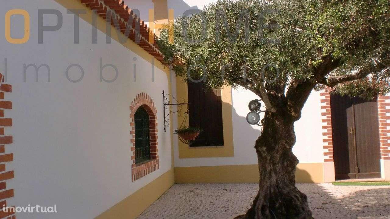 Quintas e herdades para comprar, Vila Chã de Ourique, Santarém - Foto 5