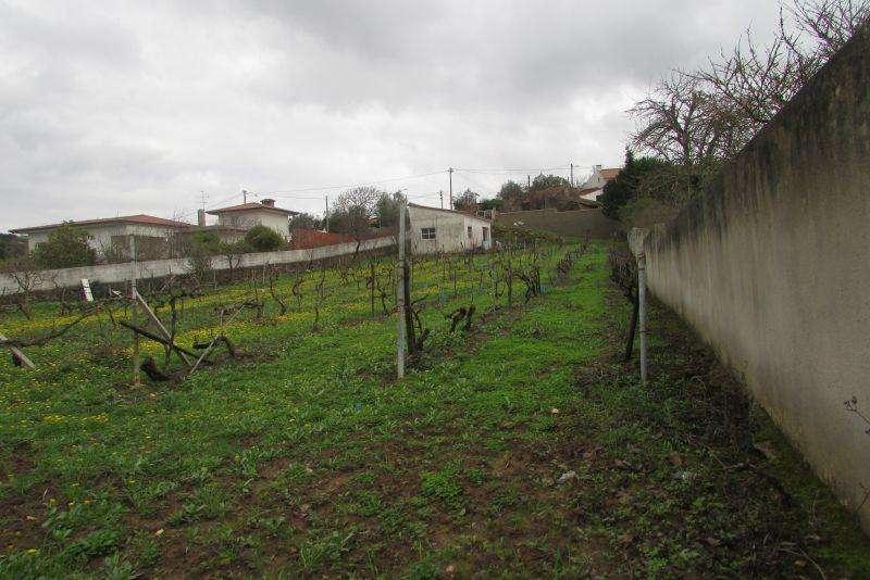 Terreno para comprar, São Quintino, Lisboa - Foto 2