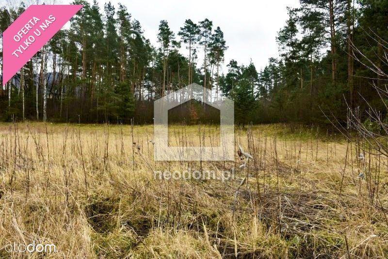 Chrzanów- budowlana z własnym lasem - 89 arów