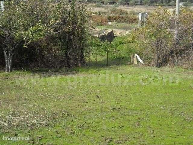 Terreno para comprar, Almaceda, Castelo Branco - Foto 7