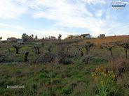 Terreno para comprar, Graça, Pedrógão Grande, Leiria - Foto 4