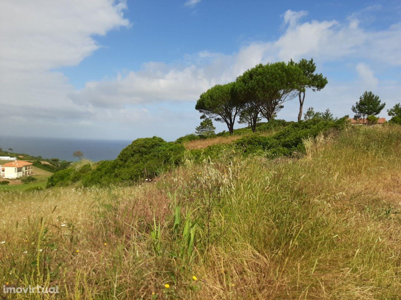 Terreno com vista mar e projecto aprovado - Serra da Pescaria