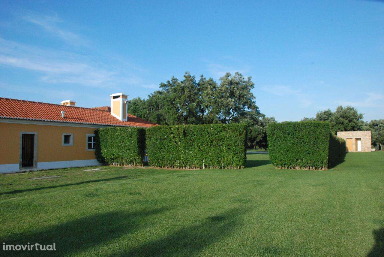 Quintas e herdades para comprar, Vila Chã de Ourique, Cartaxo, Santarém - Foto 6