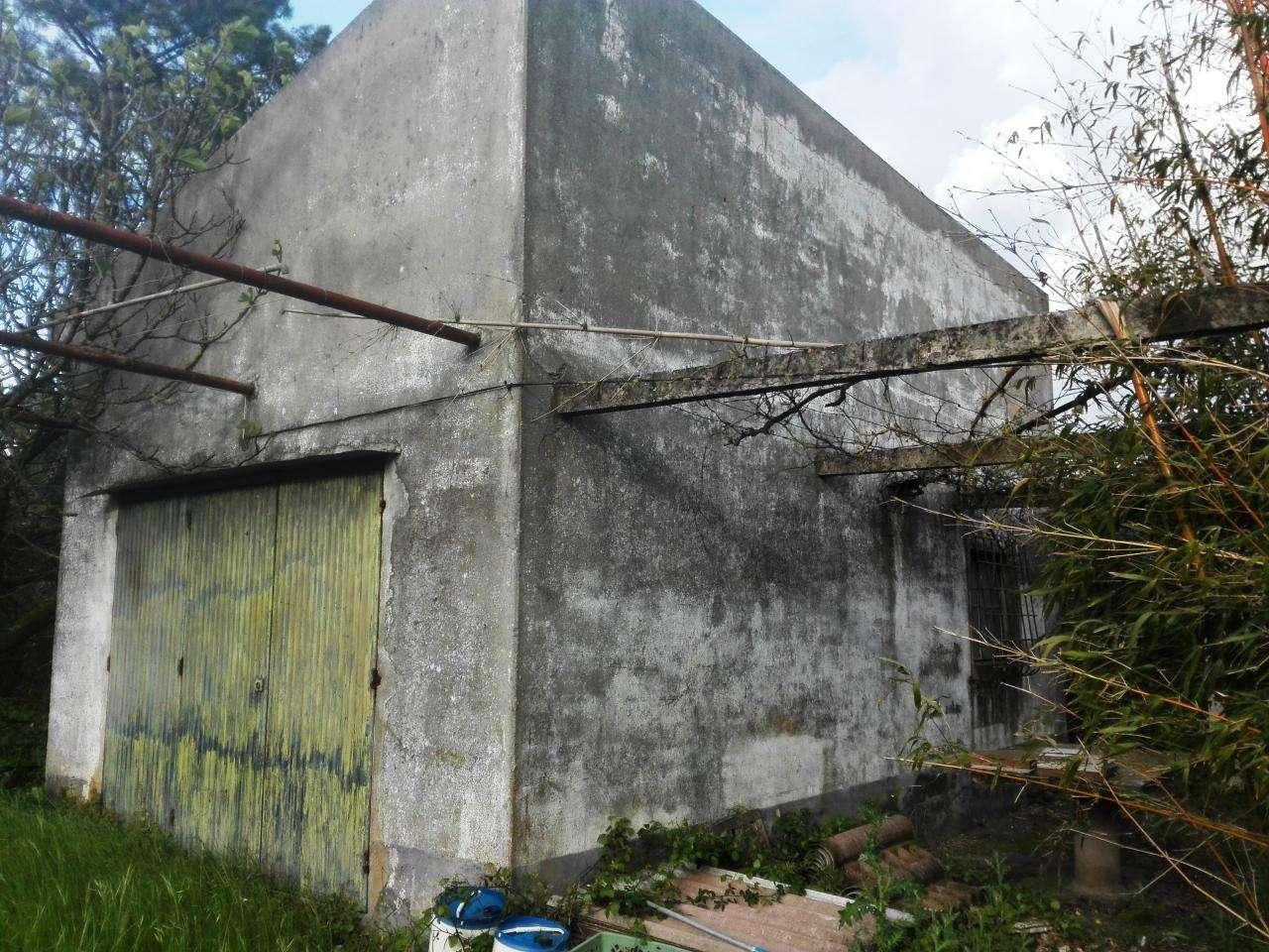 Quintas e herdades para comprar, Quinta do Anjo, Setúbal - Foto 17