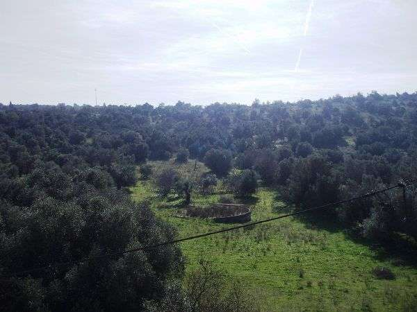 Terreno para comprar, Paderne, Albufeira, Faro - Foto 2