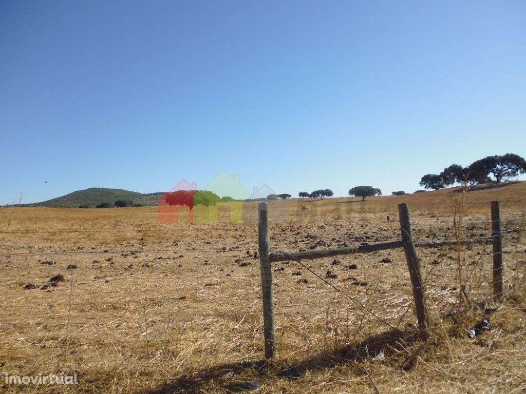 Quintas e herdades para comprar, Vila Verde de Ficalho, Beja - Foto 15