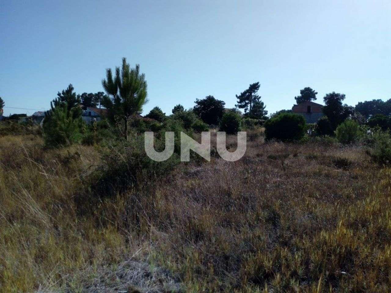 Terreno para comprar, Quinta do Anjo, Setúbal - Foto 5