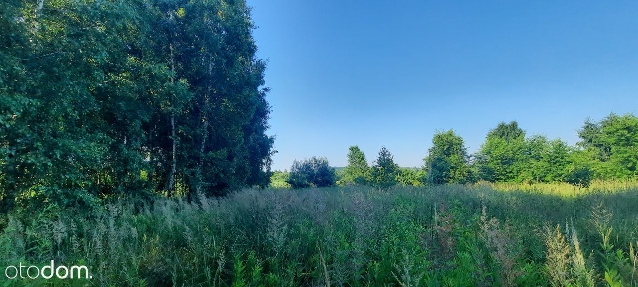 Działka rolna powierzchnia 15 ar TONIE
