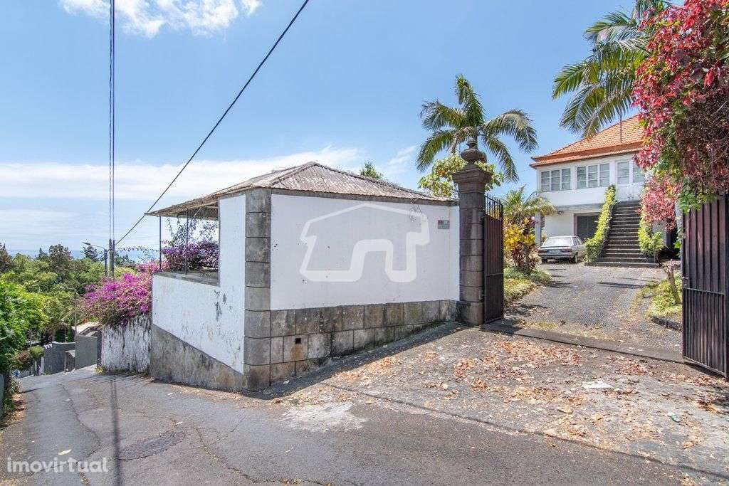 Quintas e herdades para comprar, São Martinho, Ilha da Madeira - Foto 3