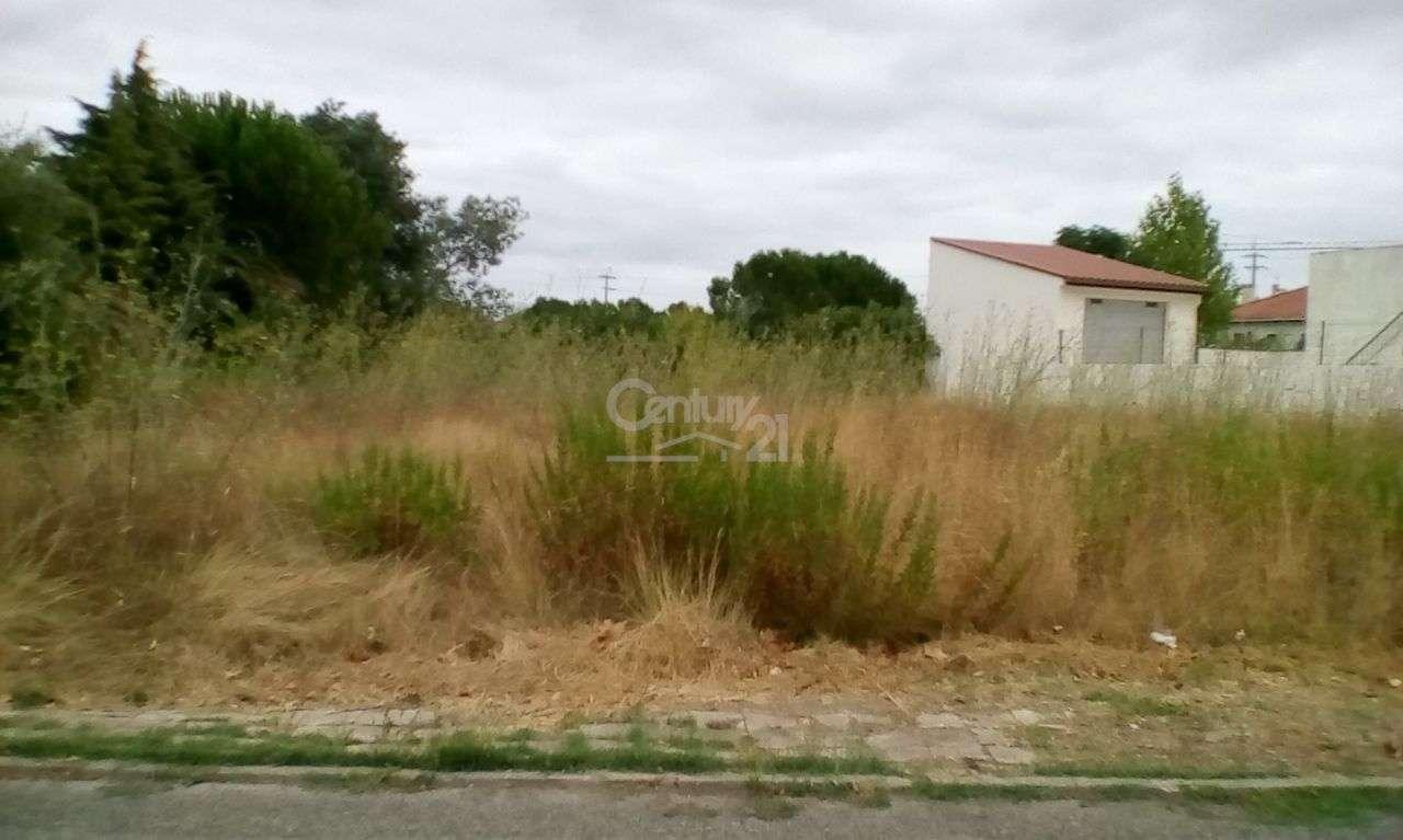 Terreno para comprar, Riachos, Santarém - Foto 5