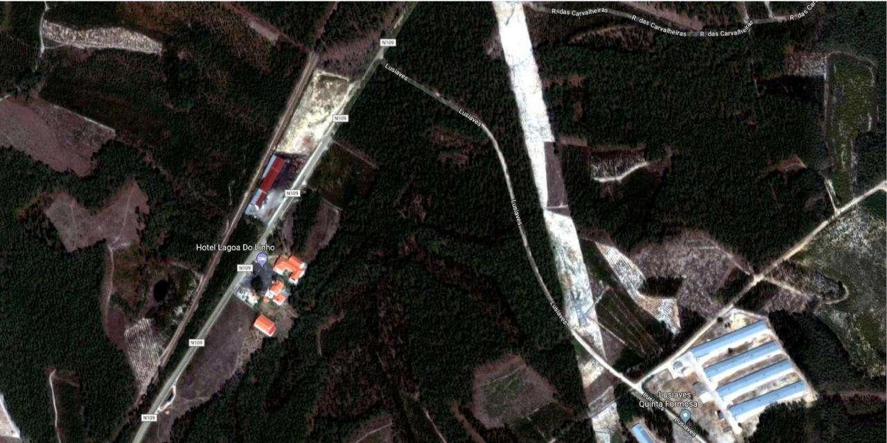 Terreno para comprar, Guia, Ilha e Mata Mourisca, Pombal, Leiria - Foto 3