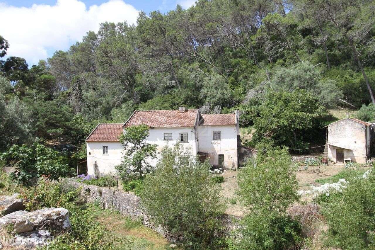 Quintas e herdades para comprar, Alcabideche, Cascais, Lisboa - Foto 6
