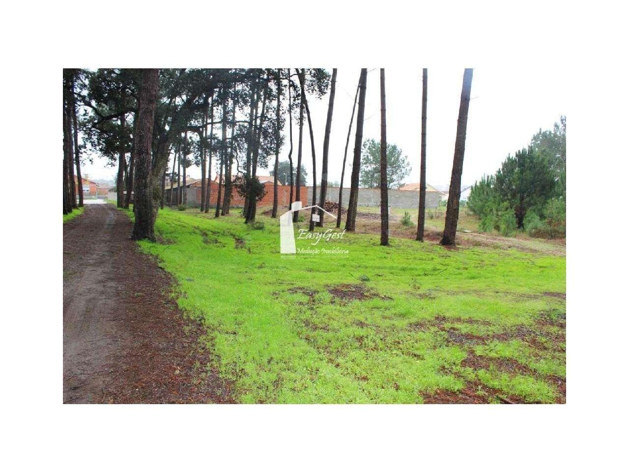 Terreno para comprar, Monte Redondo e Carreira, Leiria - Foto 5