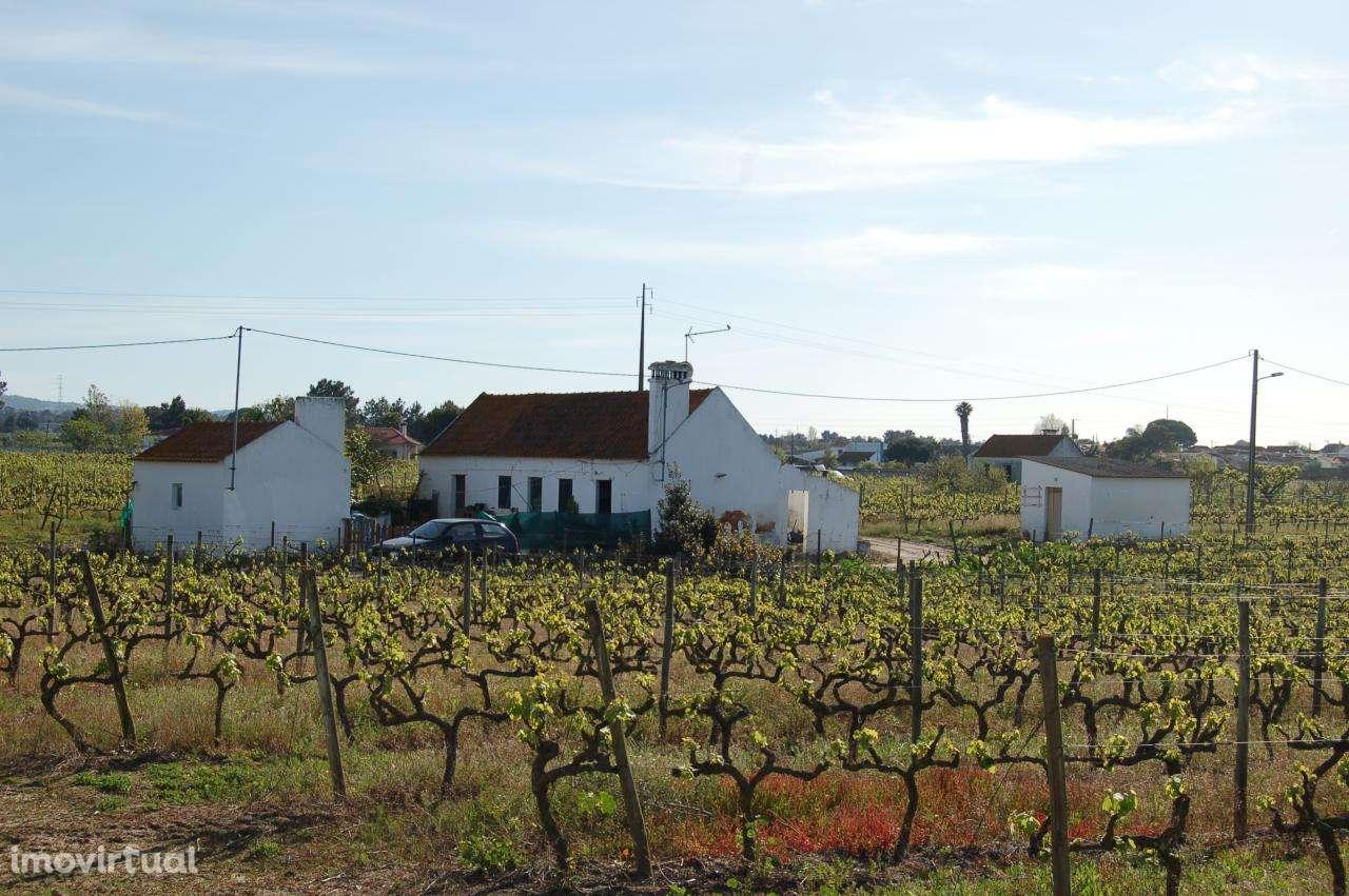 Quintas e herdades para comprar, Pinhal Novo, Setúbal - Foto 4
