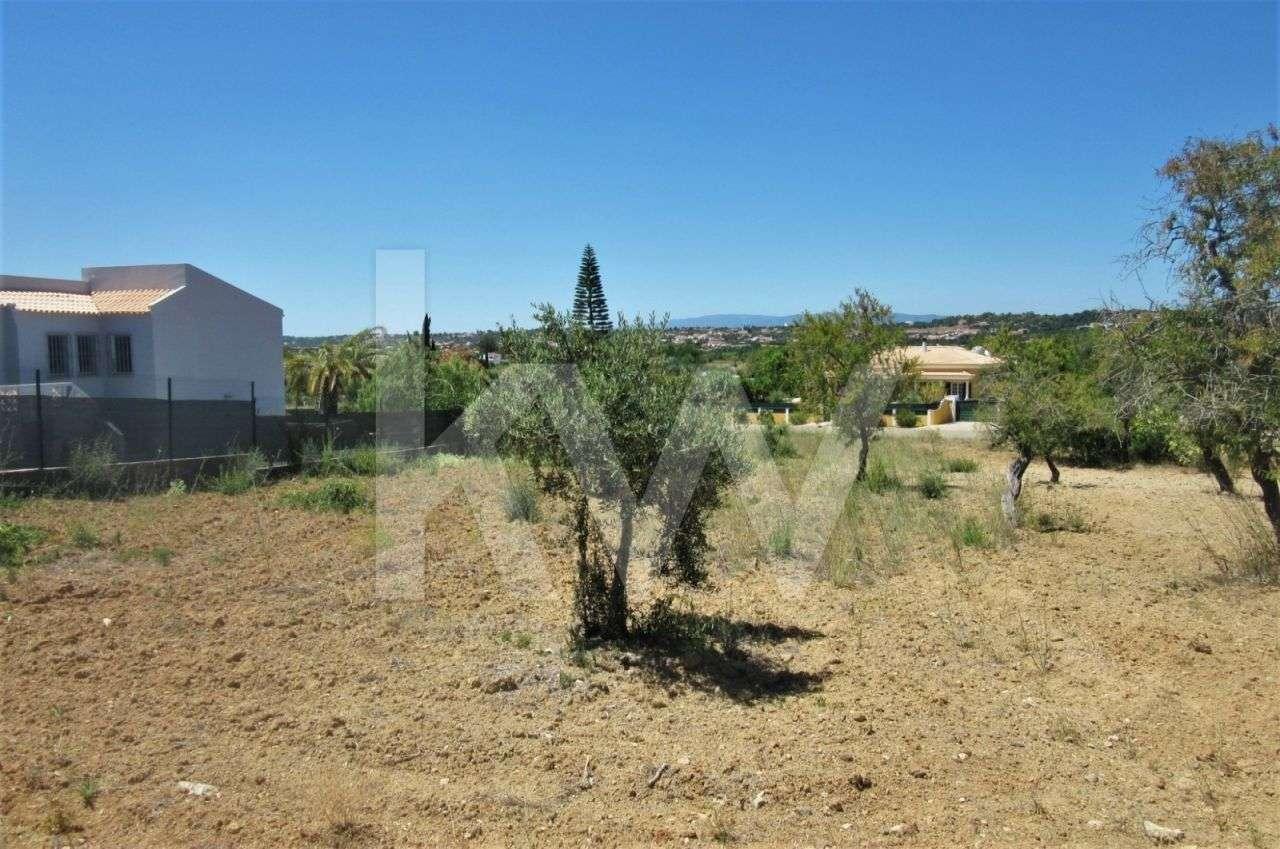 Terreno para comprar, Alcantarilha e Pêra, Silves, Faro - Foto 11