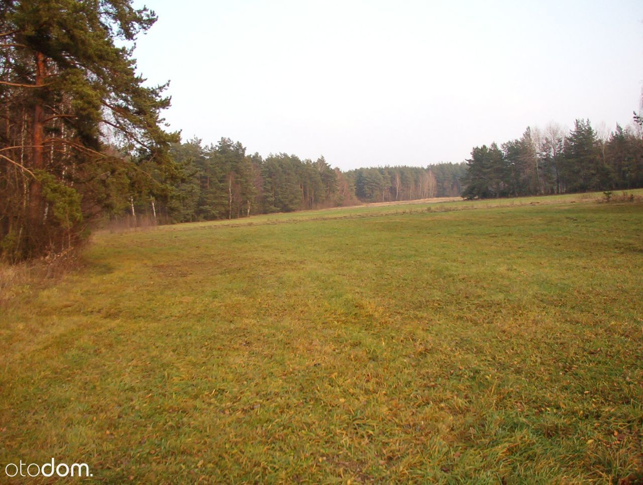 Piękna,duża działka rolno-leśna, powierzchnia 3,2h