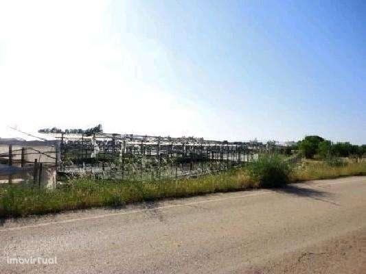 Terreno para comprar, Silves, Faro - Foto 3