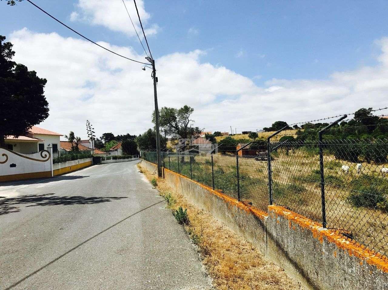 Quintas e herdades para comprar, Ereira e Lapa, Cartaxo, Santarém - Foto 2