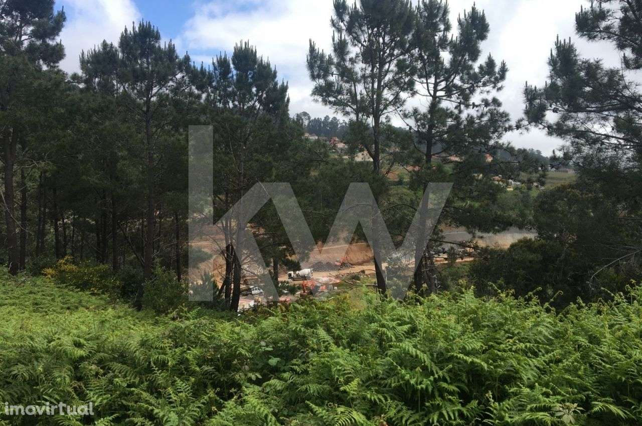 Terreno para comprar, Arco da Calheta, Ilha da Madeira - Foto 5