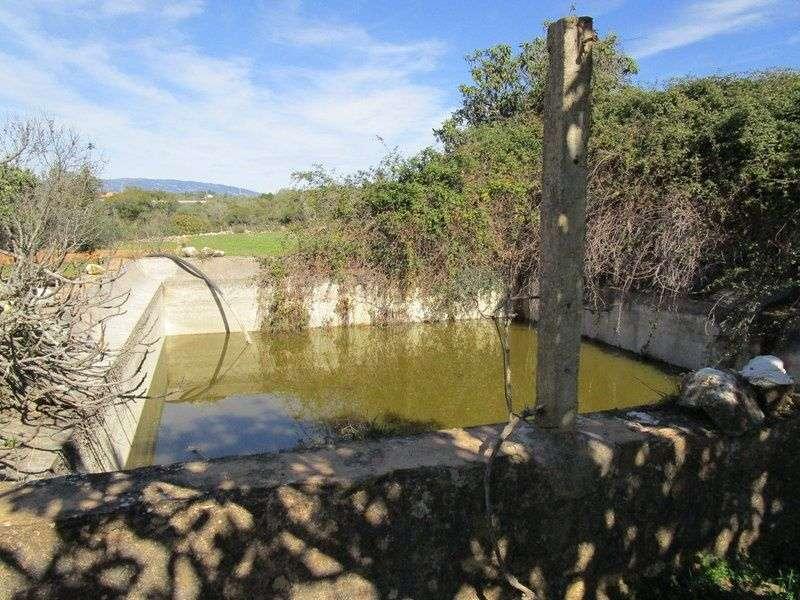 Quintas e herdades para comprar, Mexilhoeira Grande, Portimão, Faro - Foto 9