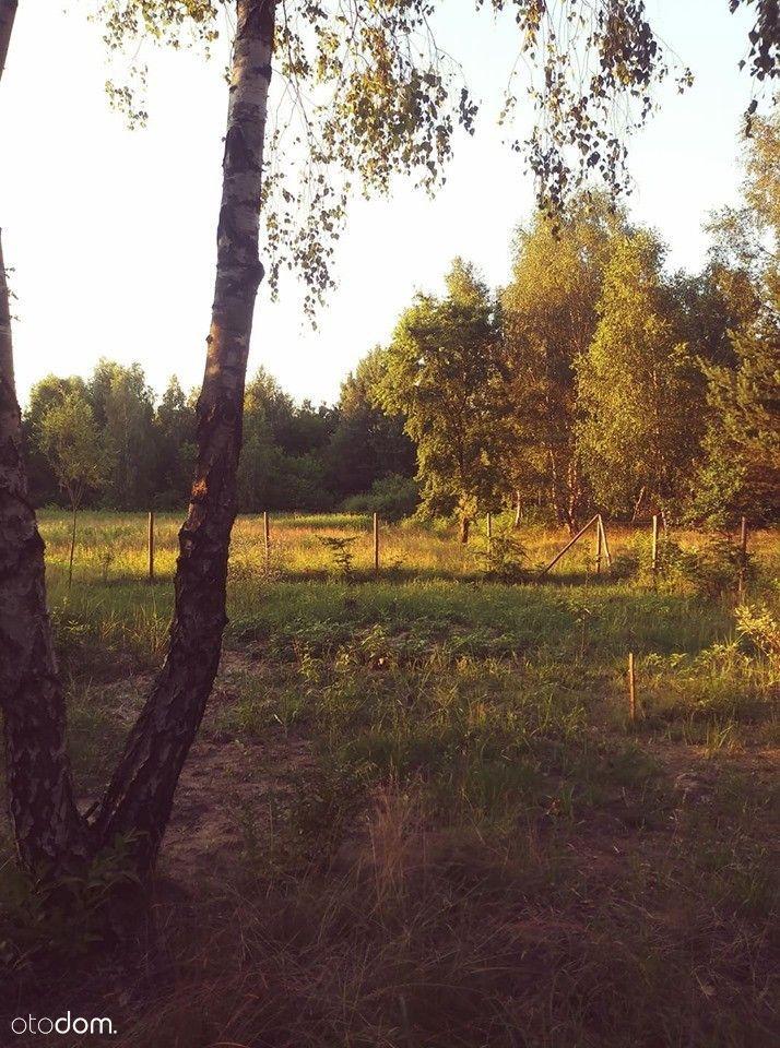 2700 m2 w Celinowie, 10 km od Mińska Mazowieckiego