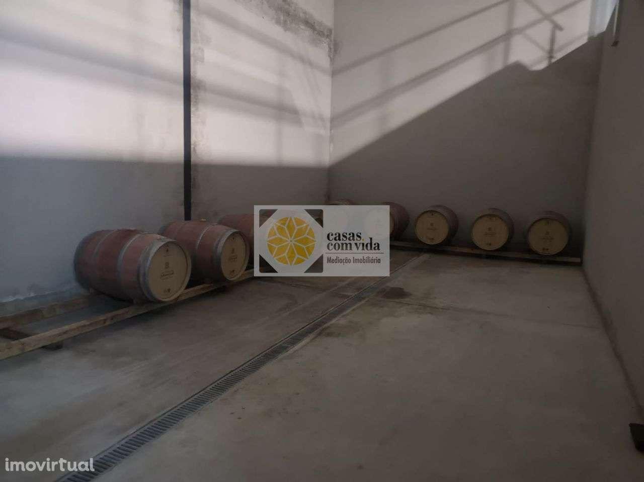 Quintas e herdades para comprar, Seixo de Manhoses, Vila Flor, Bragança - Foto 15