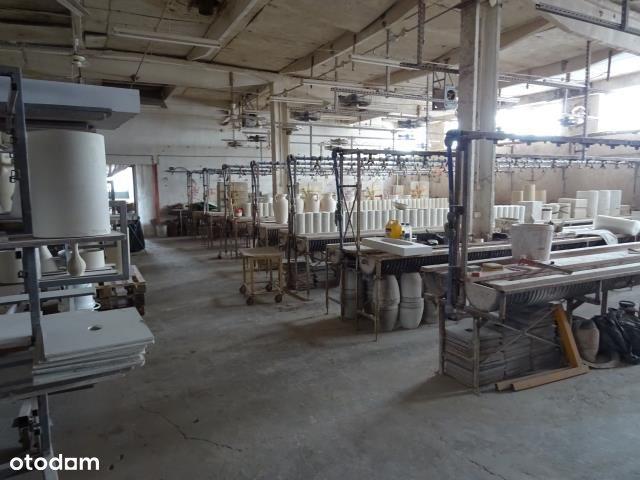 Hala/Magazyn, 550 m², Chodzież