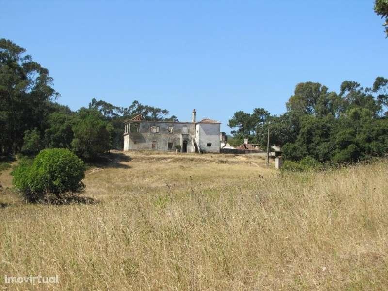 Terreno para comprar, Milharado, Mafra, Lisboa - Foto 7
