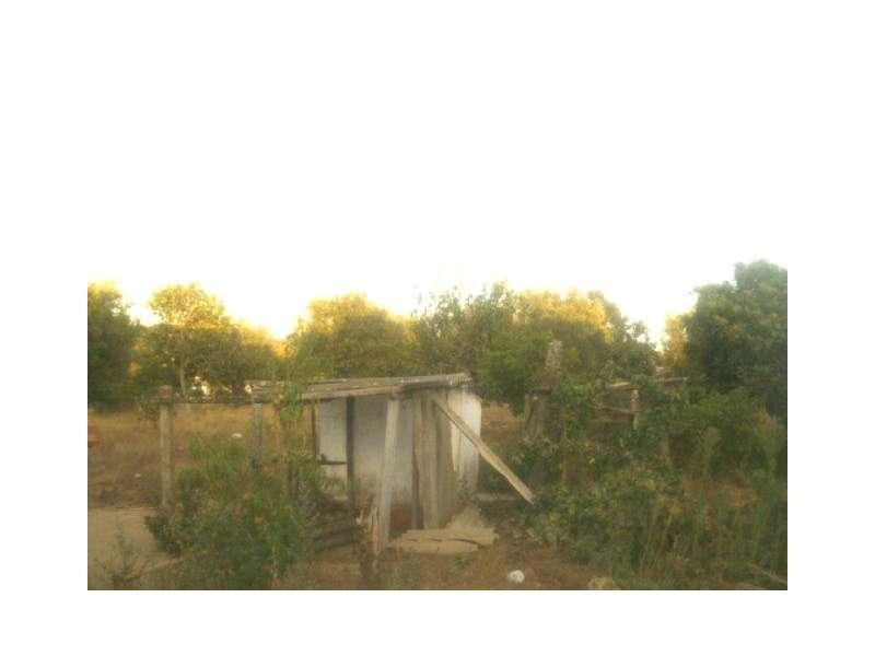 Quintas e herdades para comprar, Bemposta, Abrantes, Santarém - Foto 9