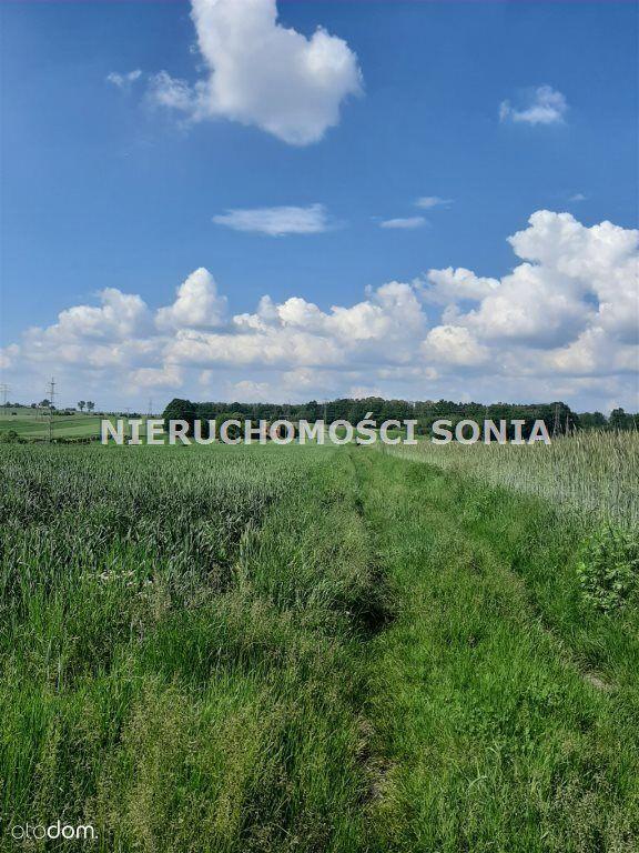 Działki Budowlane +rolne Wieszowa