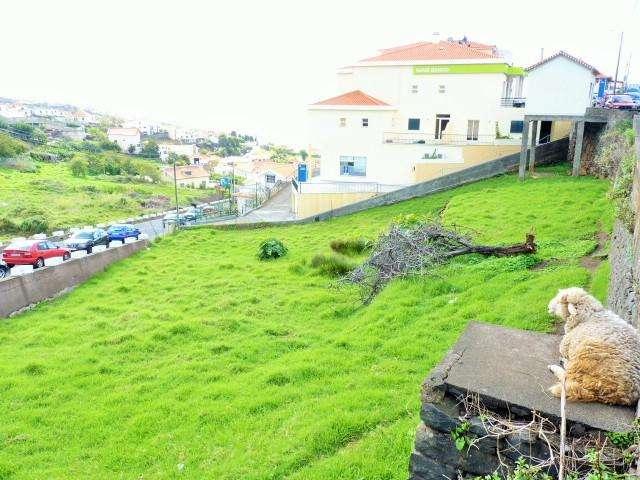 Terreno para comprar, Calheta, Ilha da Madeira - Foto 3