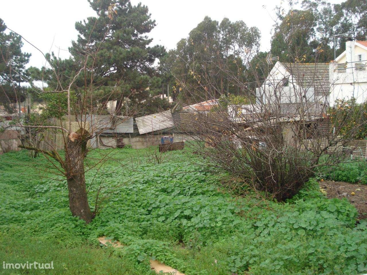 Terreno para comprar, Quinta do Conde, Sesimbra, Setúbal - Foto 3