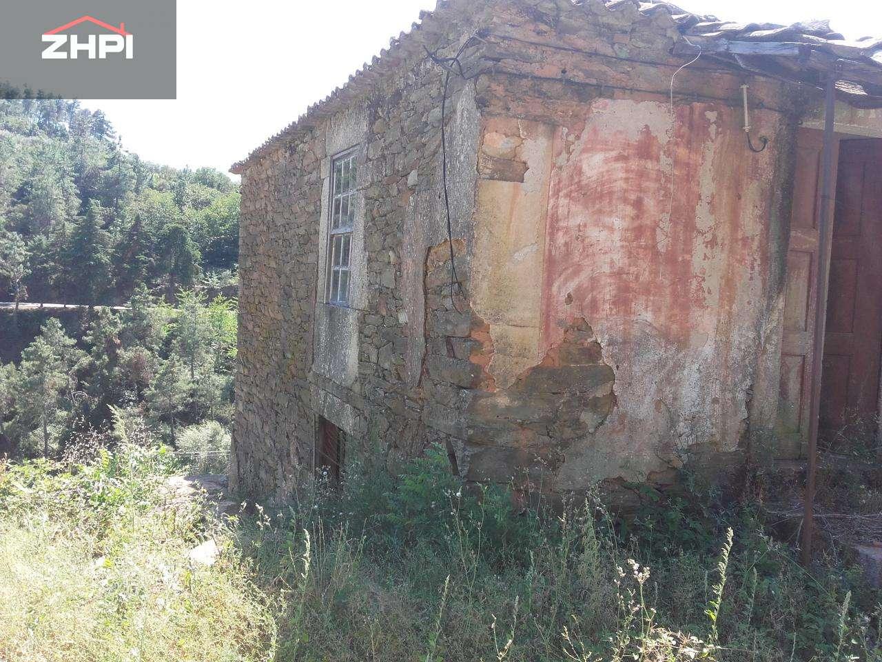 Quintas e herdades para comprar, Armamar - Foto 17