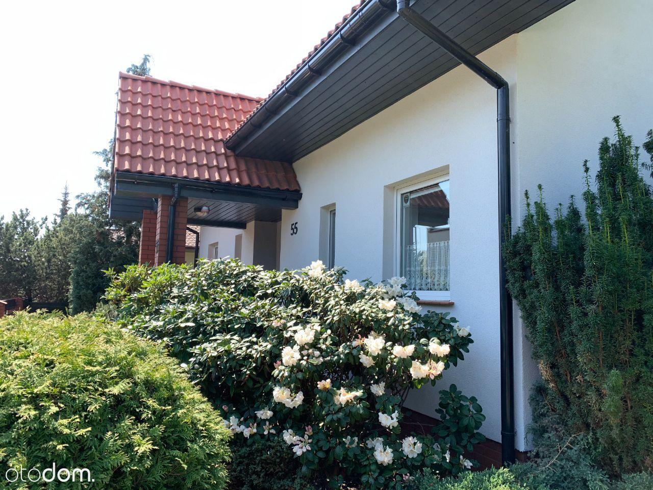Dom w zieleni - miasto i natura