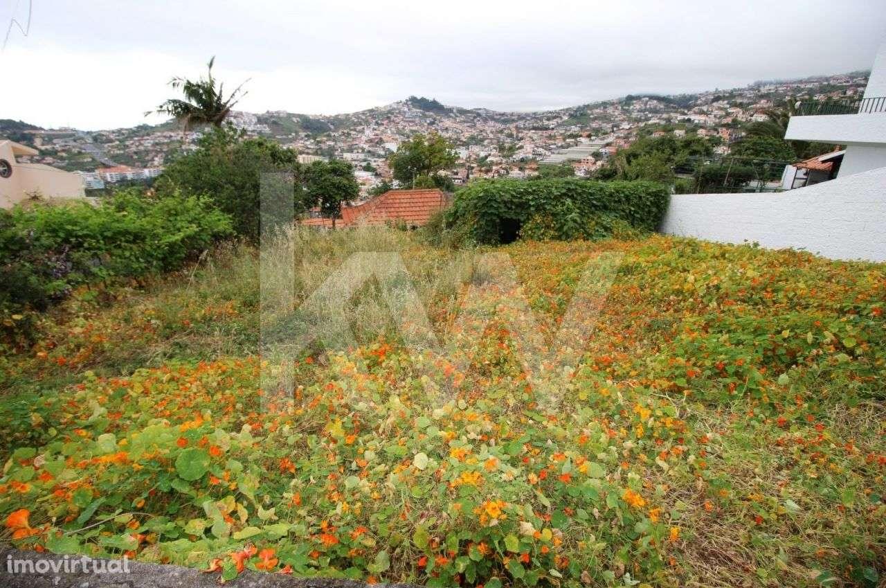 Moradia para comprar, São Martinho, Ilha da Madeira - Foto 2