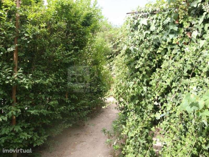 Terreno para comprar, Pinhal Novo, Setúbal - Foto 31