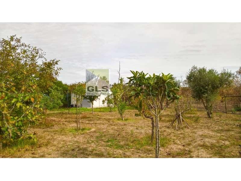 Moradia para comprar, Quinta do Anjo, Palmela, Setúbal - Foto 13