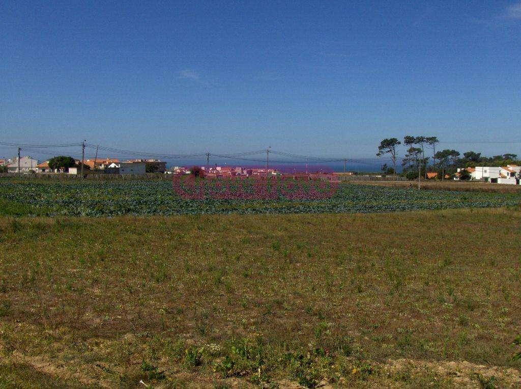 Terreno para comprar, Arcozelo, Vila Nova de Gaia, Porto - Foto 3